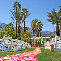 Married in palm springs wedding venues junglespirit